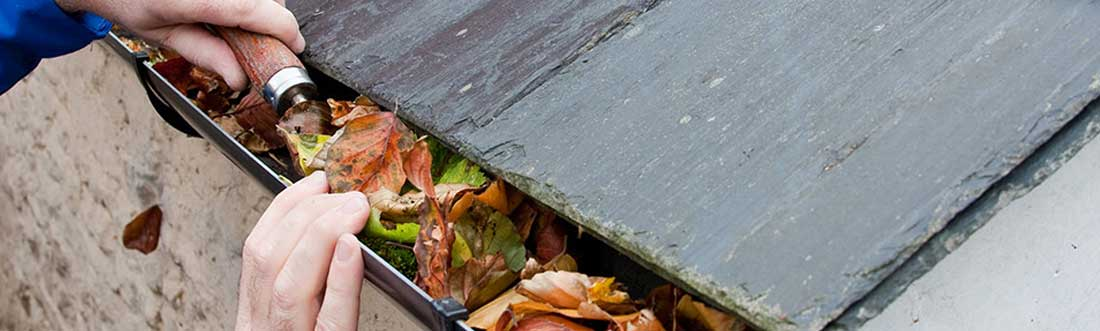Cleaning leaves from gutters.