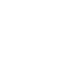 Roof Replacement Icon